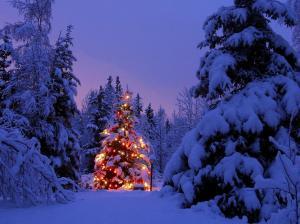 christmastreewallpaper